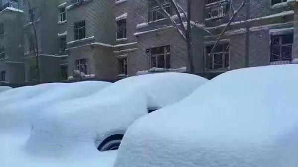 北京下雪了2017-2-21,第二天的雪和烟台比比